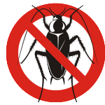 faq-cockroach-pest